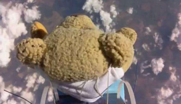 Teddy bear skydiver
